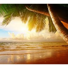Рассвет на Карибах