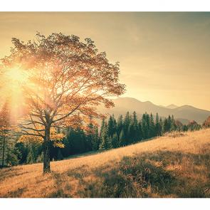 Рассвет в горах