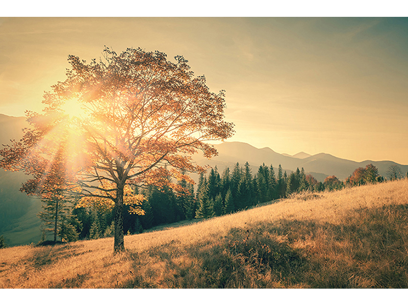 Рассвет в горах 1258