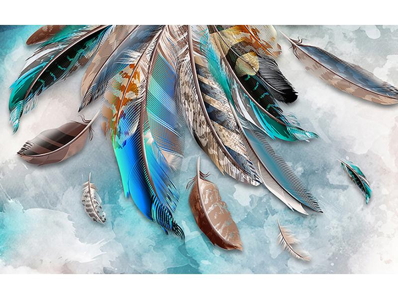Разноцветные перья 1261