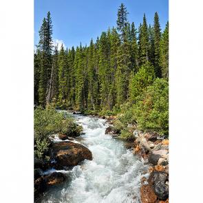 Река в Канаде
