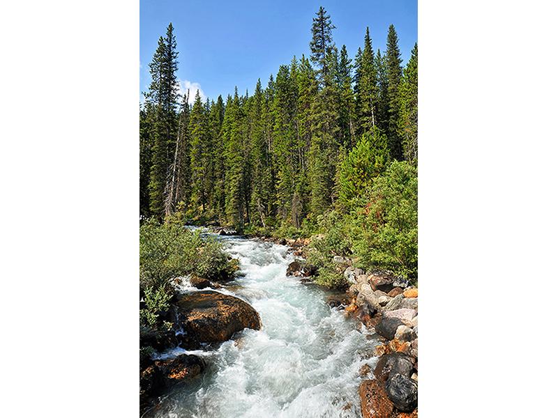 Река в Канаде 1245
