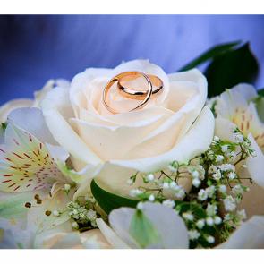 Роза и кольца