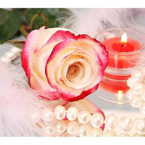 Роза и свеча