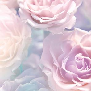 Розовая дымка