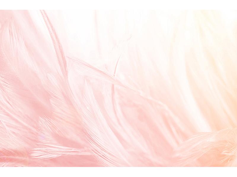 Розовые перья 1226