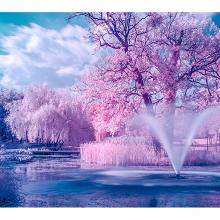 Розовый парк