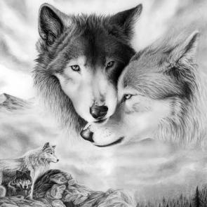 Волк 5730