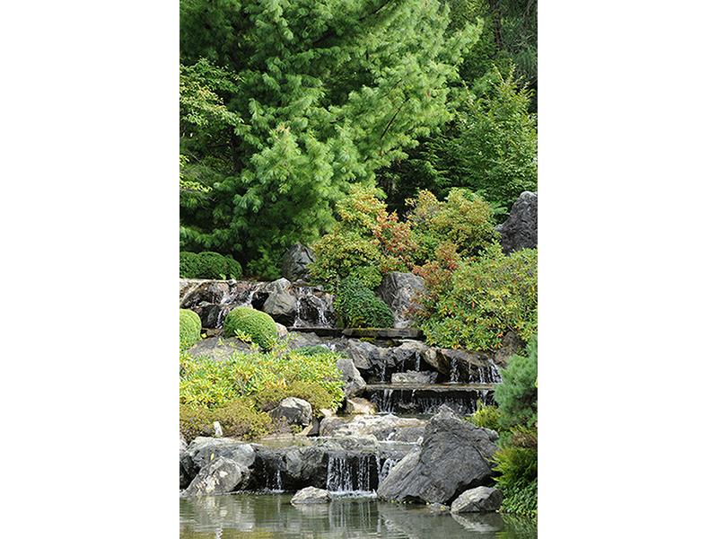 Сад Монреаля 1201