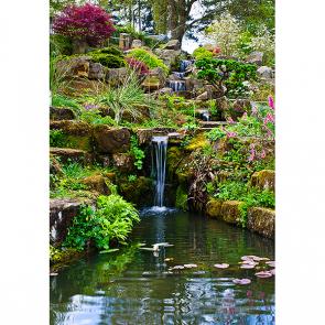 Сад с водопадом