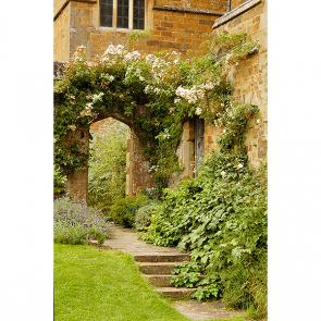 Сад в замке