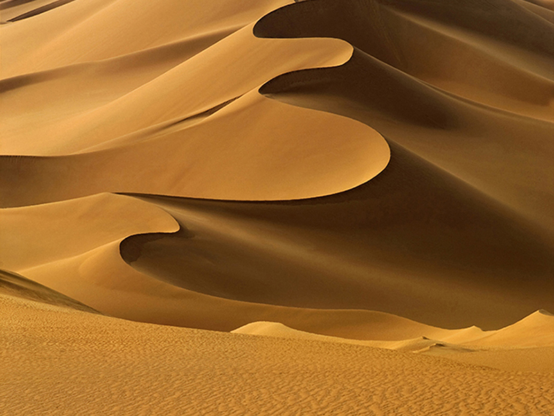 Сахара 1189