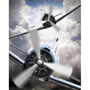 Самолеты 13049