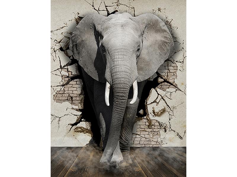Слон 3д 1165
