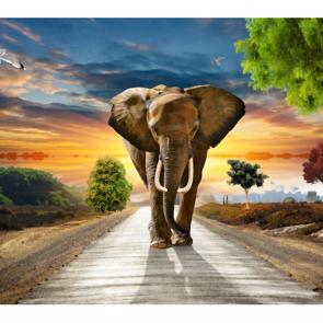 Слон 5789