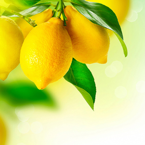 Спелые лимоны 174457913