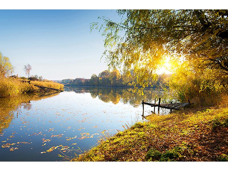 Спокойная река 1152