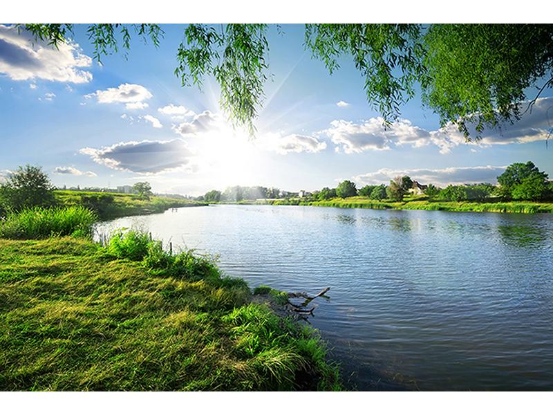 Спокойная река 1153