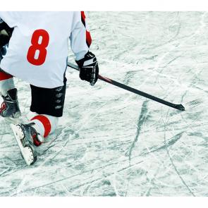 Спорт 14772