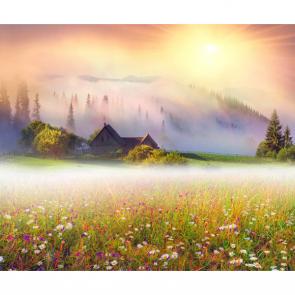 Туман 13597