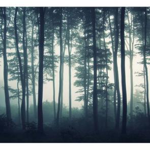 Туман 14340