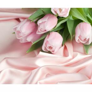 Тюльпаны 00940
