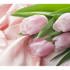Тюльпаны 14766