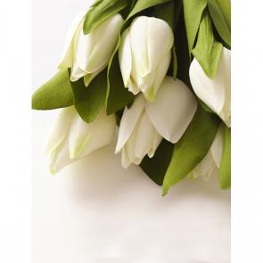 Тюльпаны 16040