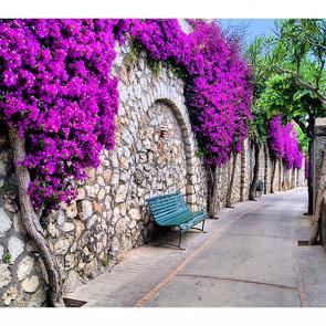 Улица в Капри