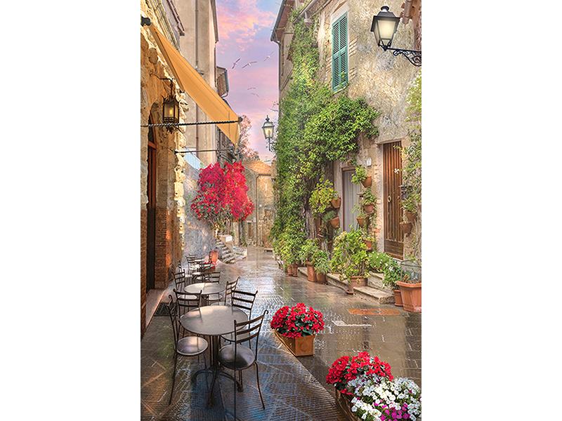 Улочка с кафе и цветами 1089