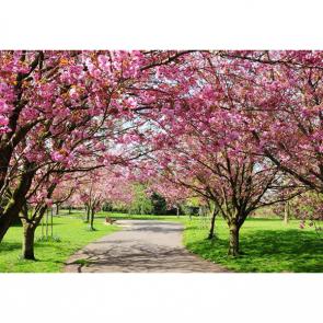 Весна 01010