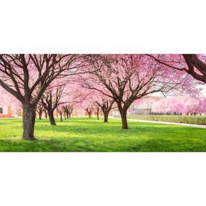 Весна 08037