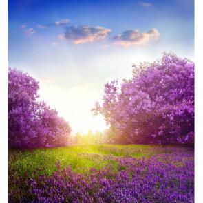 Весна 11201