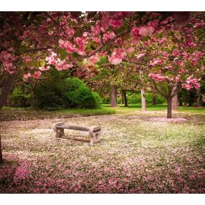Весна 11246