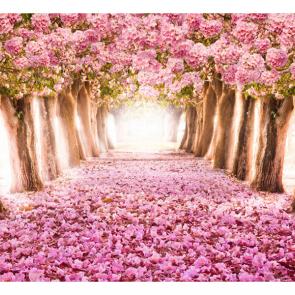Весна 13085