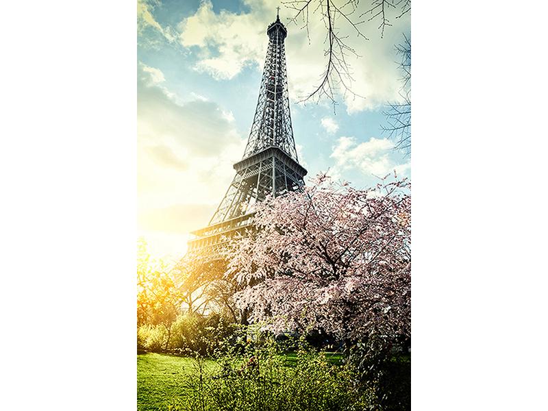 Весна в Париже 1896