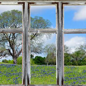 Вид из окна 01462