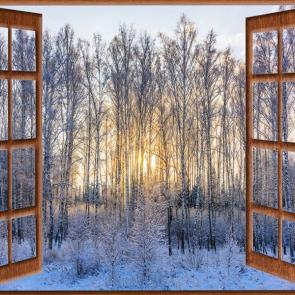 Вид из окна 14768