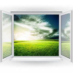 Вид из окна 16169