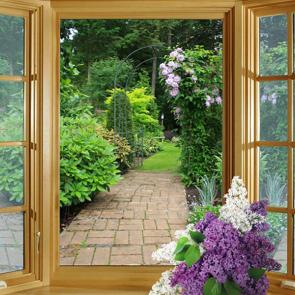 Вид из окна 5913434