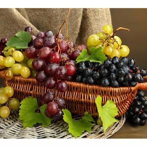 Виноград 168533798