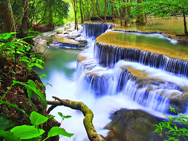 Водопад в глубине джунглей 1858