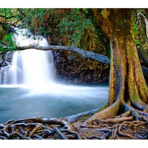 Водопад в Мауи
