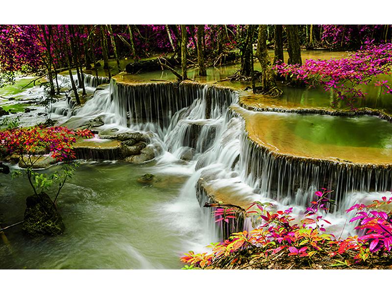 Водопад в тропическом лесу 1846
