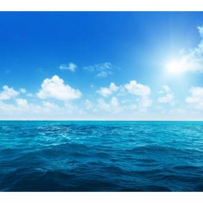 Волны 5179
