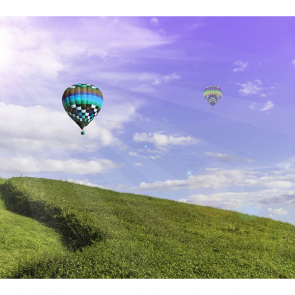 Воздушные шары 5168