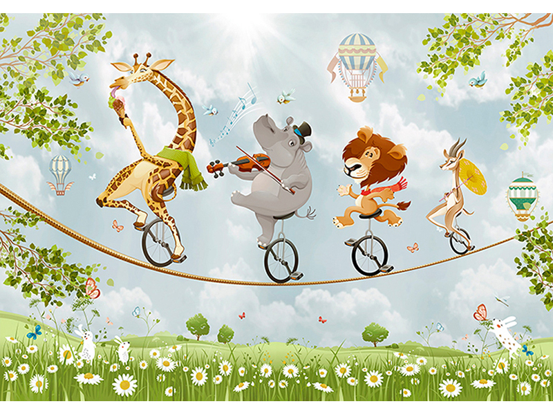Воздушный цирк 2216