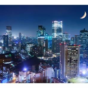 Япония в полночь