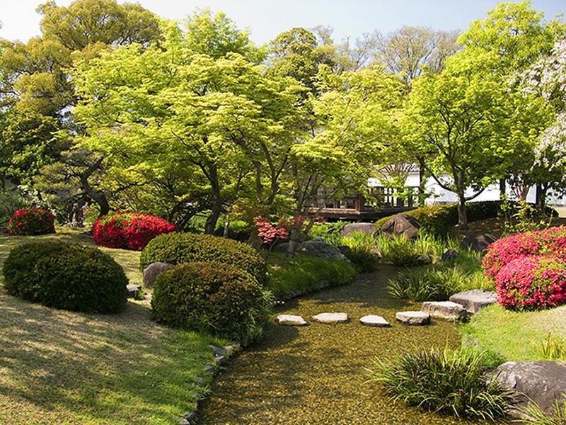 Японский сад 1001