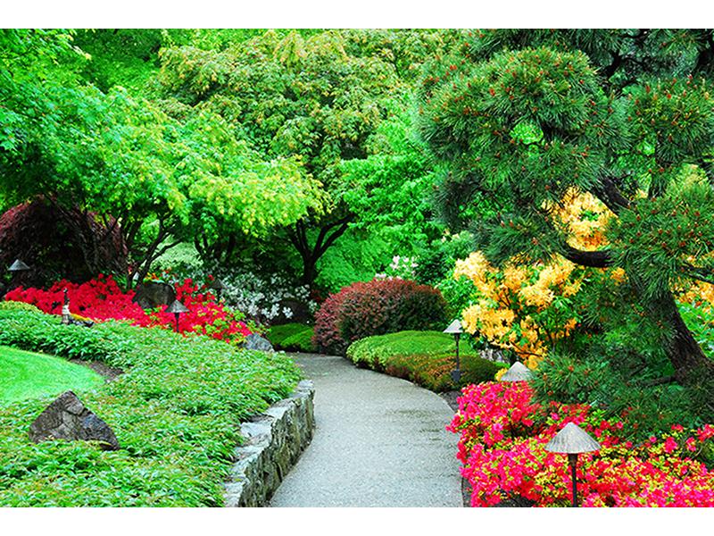 Зеленый сад 1683